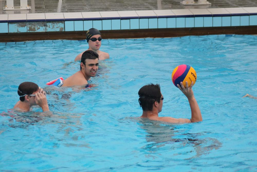 Water Polo n°17  |