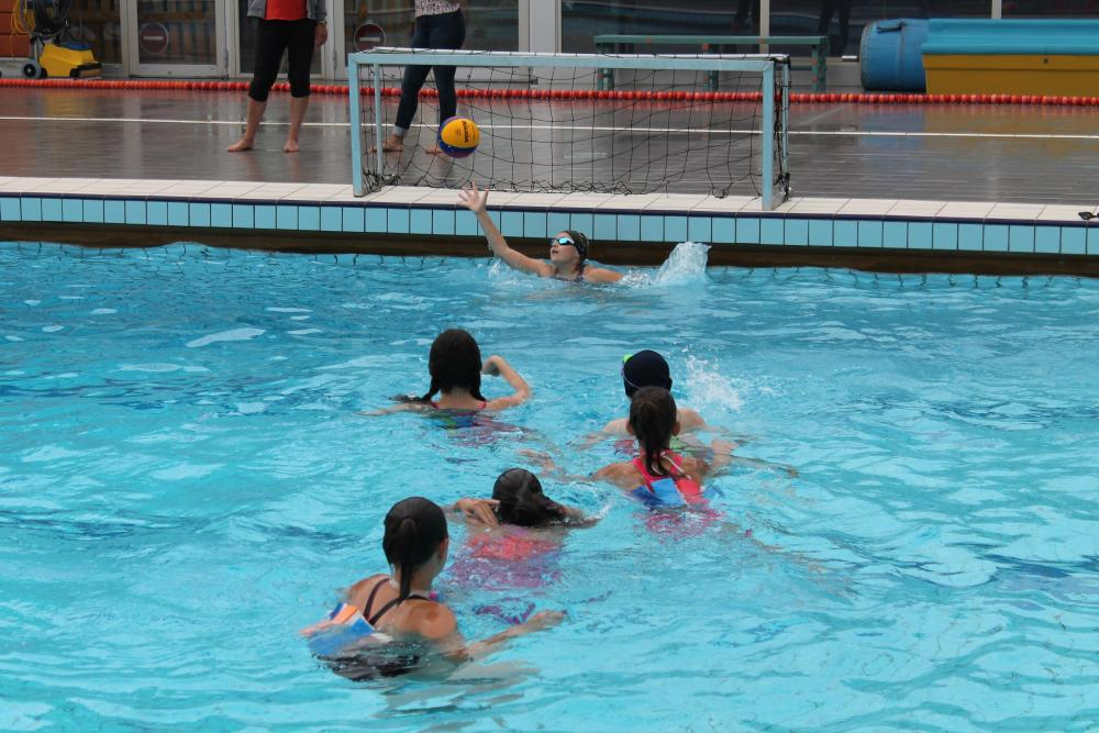 Water Polo n°21  |