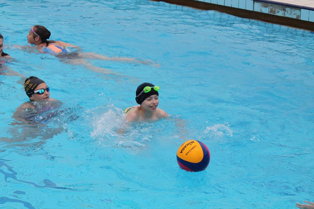 Water Polo n°42  |