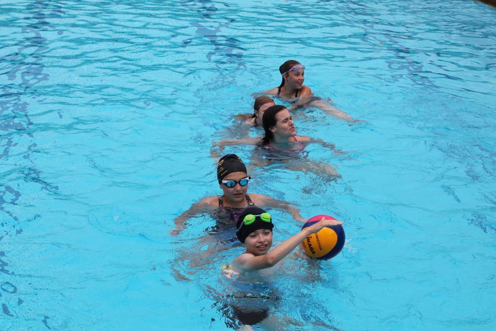 Water Polo n°46  |