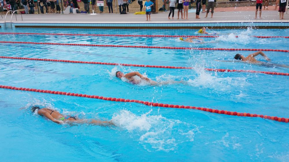 Photos Aquathlon 2016 n°10  |