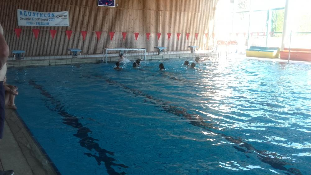 Animation water polo n°5  |